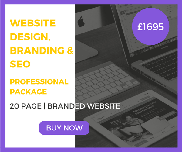 20-Page Website Design, Branding & SEO Professional Package