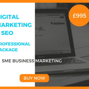 Digital Marketing SEO Professional Package