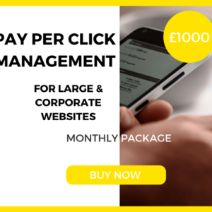 Pay-Per-Click Management - Large & Corporate Package - £1000